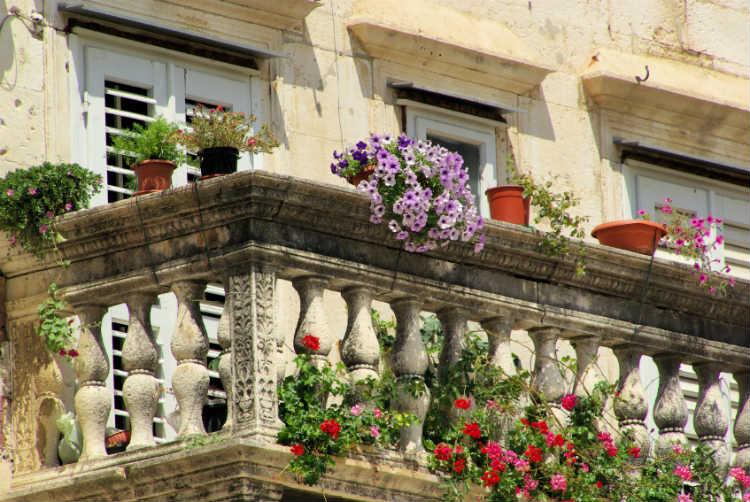 welche pflanzen eignen sich im fr hjahr f r den garten oder den balkon wohnungs. Black Bedroom Furniture Sets. Home Design Ideas