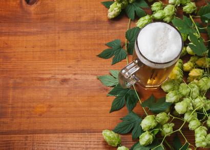 Bier eignet sich durchaus zur Pflanzenbewässerung