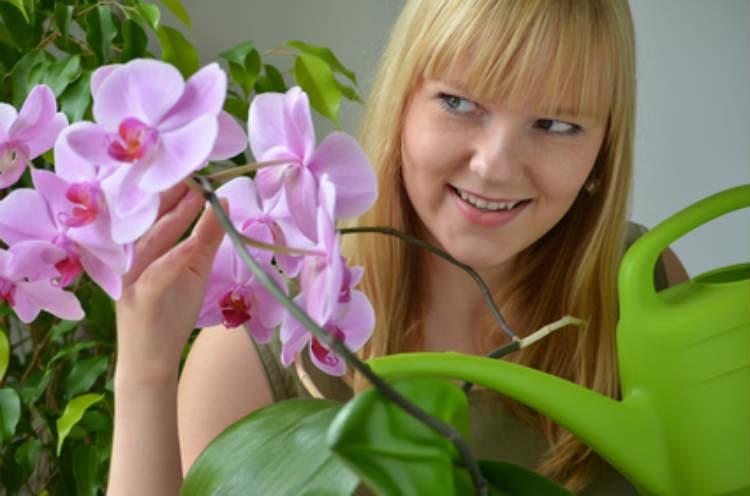 Eine Frau gießt Ihre Blumen