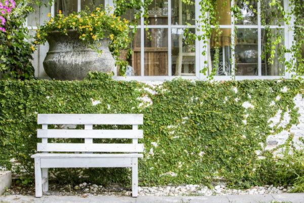 DIY Gartenbank vor einer Hausfassade mit Pflanzen