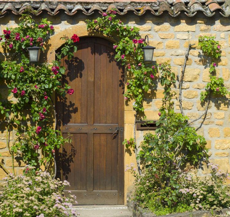 Eingang mit Rosenranken