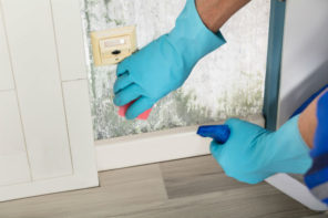 Feuchtigkeit und Schimmel in der Wohnung – Ursachen und Hilfe