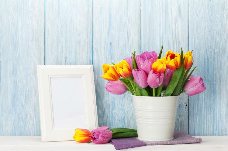 bunte Tulpen in einer weißen Vase neben einem weißen leeren Bilderrahmen