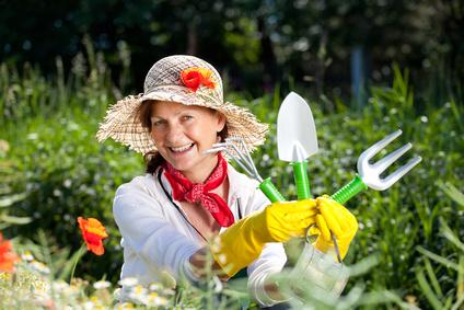 Ernten Sie Ihr eigenes Obst und Gemüse aus Ihrem Garten