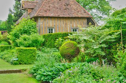 Ein grüner Garten hinter einem alten Wohnhaus.