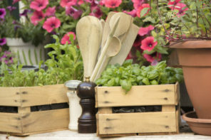 Kräuterbeet anlegen leicht gemacht – mit diesen Tipps!
