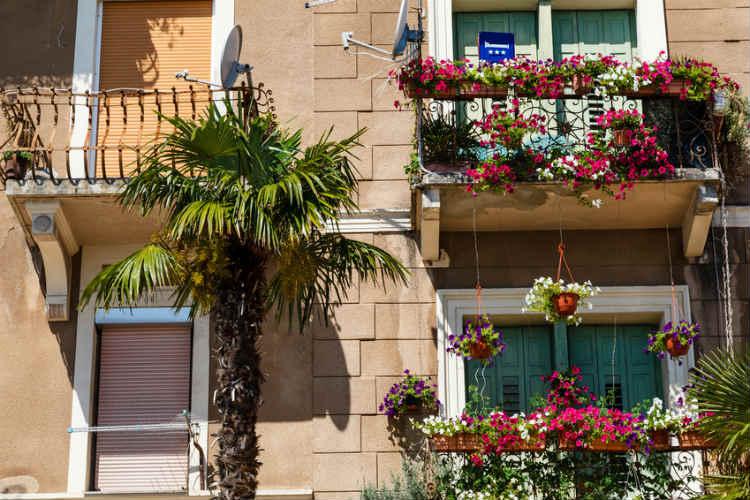 Pflanzen auf Balkon