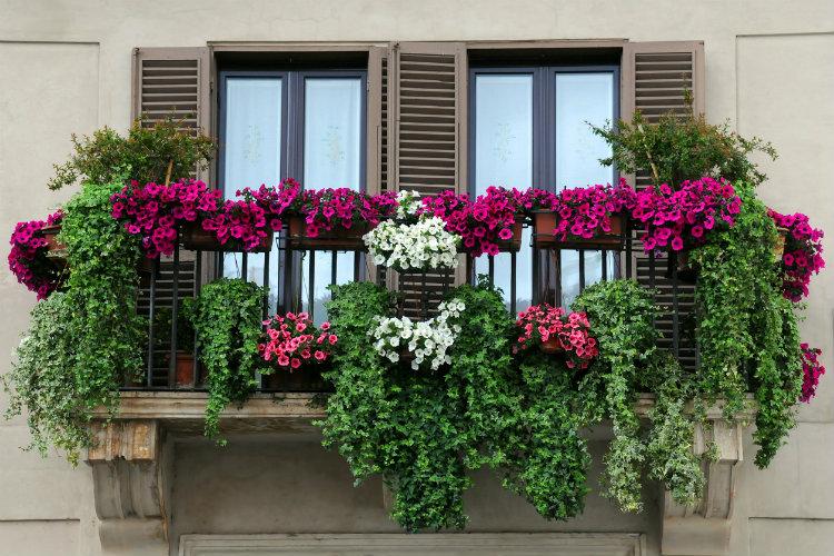Sichtschutz Ideen Fur Den Balkon Wohnungs Einrichtung De