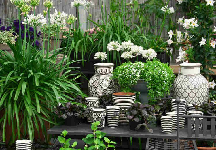 Dekorative Vase für den Sommer in Türkis als Blumentopf