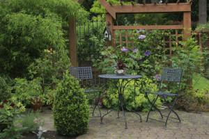 Terrasse in einem zugewachsenen Garten
