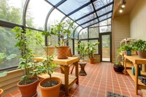 Pflanzen auch im Winter genießen: Die Vorteile eines Wintergartens