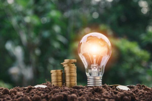 Glühbirne und Münzen