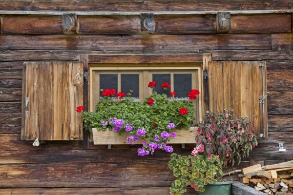 Detailaufnahme eines mit Blumen bestückten Fensters in einem Holzhaus mit Alpencharakter