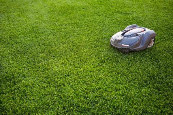 Smarter Roboter auf dem Rasen
