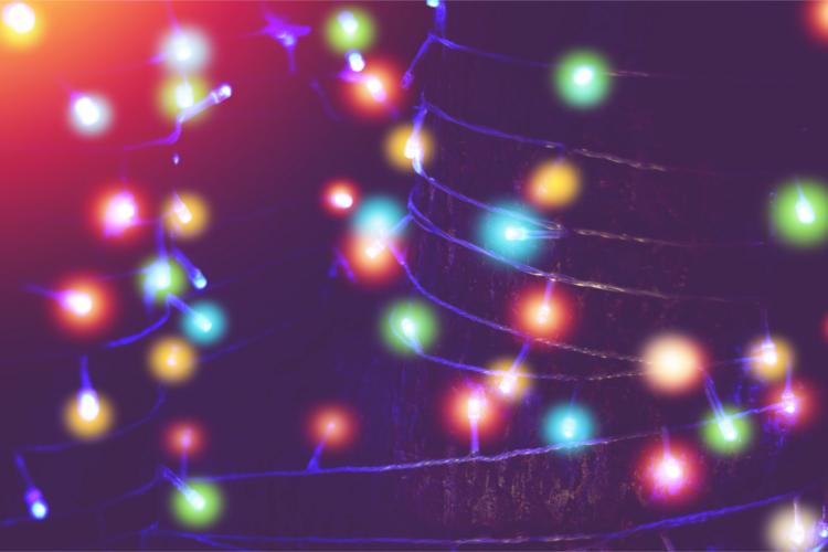 Eine bunte Lichterkette im Garten und um einen Baum gewickelt