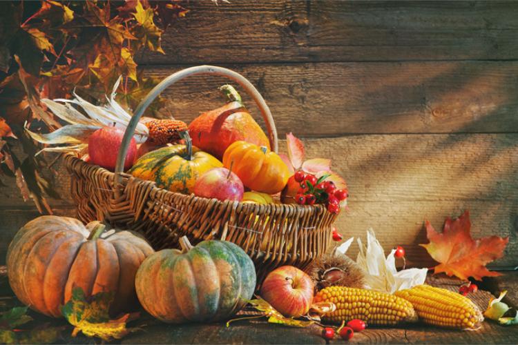 Herbstlich dekorierter Korb mit Kürbissen, Obst und Blättern vor einer Holzwand